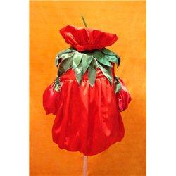 Costum de Carnaval pentru copii Roșie, Lalea 2444