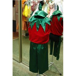 Детский карнавальный и маскарадный костюм Помидор,Тюльпан, Мак 2507, 2506, 2495, 2494