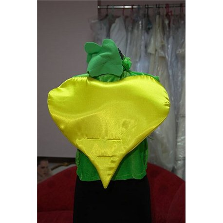 Costum de Carnaval pentru copii Sfeclă 2546, 2545