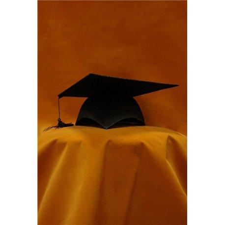 Шляпа Академика (конфидератка) 4110