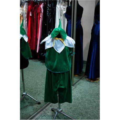 Карнавальный костюм для детей Подснежник мальчик 6006