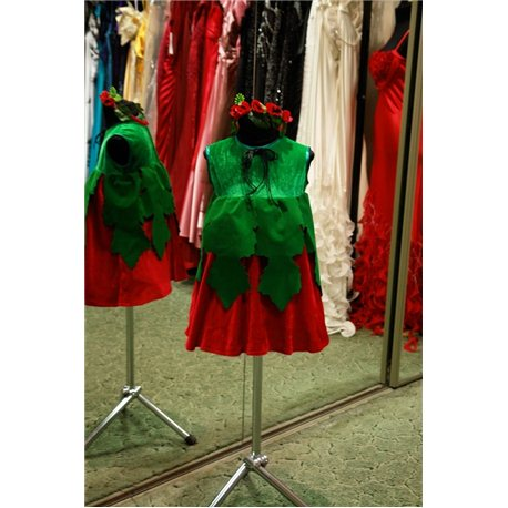 Costum de carnaval pentru copii Mac fetiţă 6014