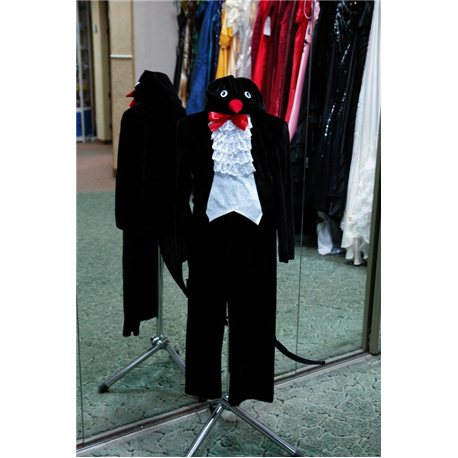 Costum de Carnaval Rindunica 6028