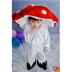 Costume de Carnaval pentru copii Ciupercă 2103, 0396