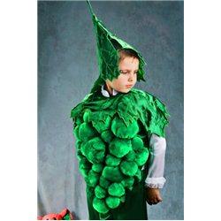 Карнавальный костюм Винограда 2978, 2472, 2509