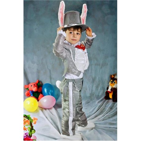Costum de Carnaval pentru copii Iepure 2965, 3139